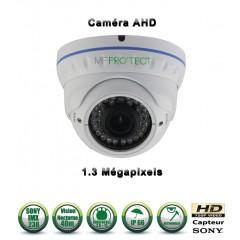 Camera dômes de vidéosurveillance Capteur SONY 1000 lignes vision nocturne 20m / Gris anthracite
