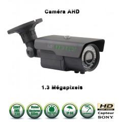 Camera dômes de vidéosurveillance Capteur SONY 1000 lignes vision nocturne 20m / Noir